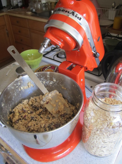 Persimmon kitchenaid mixxer
